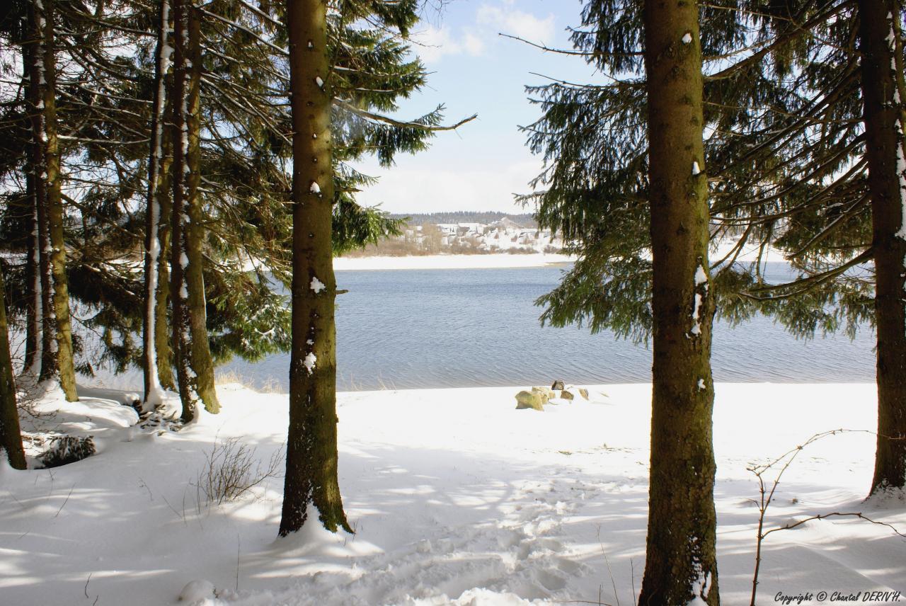 Lac de Bütgenbach - BERG
